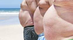 Fett - Freund oder Feind