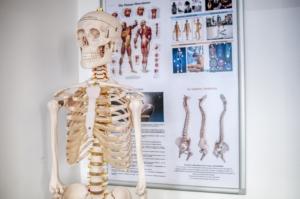 Eine gute Körperfettwaage misst die Knochenmasse